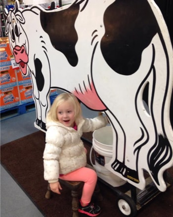Viking's In-Store Milking Cow